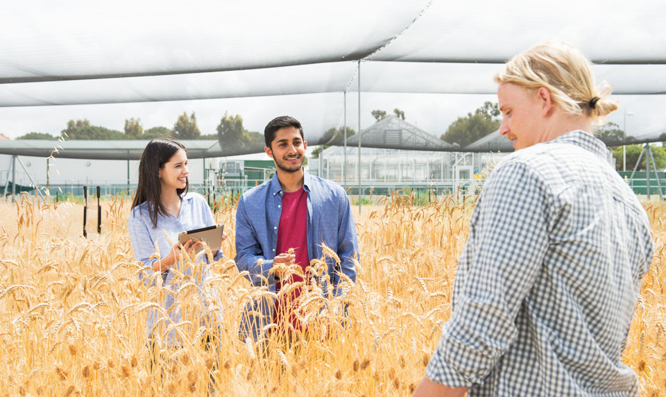 Bachelor of Agribusiness | Curtin University, Perth, Australia